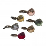Heaven Sends Multicoloured Clip on Bird Decorations